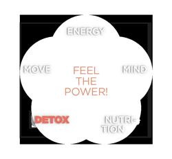 Beck und Beck Ärzte - Feel the power! - detox concept