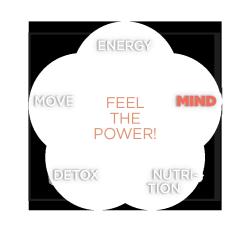 Beck und Beck Ärzte - Feel the power! - mind concept